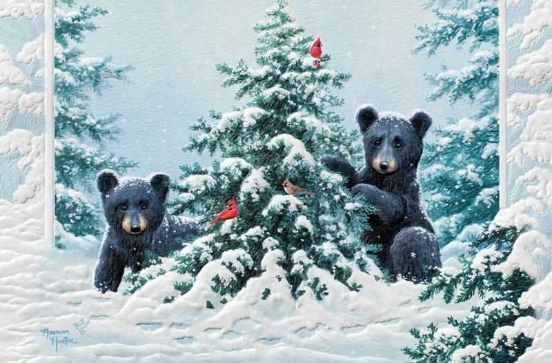 Wildlife Christmas Cards.O Christmas Tree Wildlife Themed Boxed Christmas Cards