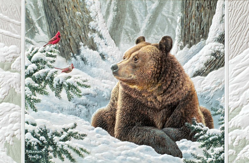 Wildlife Christmas Cards.Snow Buddies Wildlife Themed Boxed Christmas Cards
